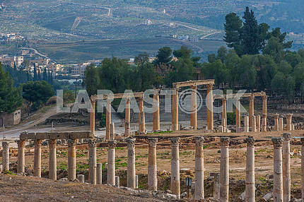 Colonnade on the ruins of the ancient city of Jarash