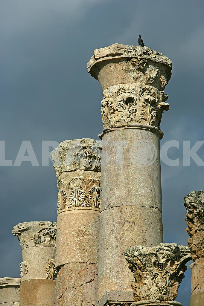 Capitals of the Roman Columns — Image 49830