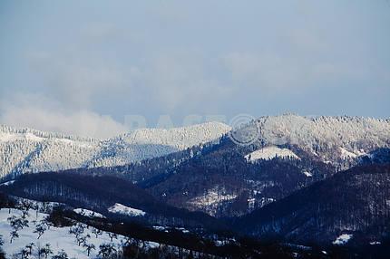 Snow-covered Carpathians