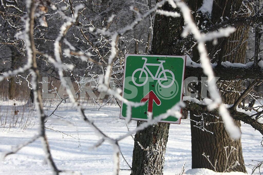 Winter in Poltava dendrological park — Image 50418