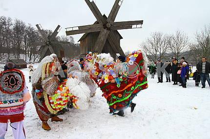 "Malankovy gurts ""Kalushari"" (""Koniki"")"