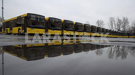 50 buses for Kiev passengers