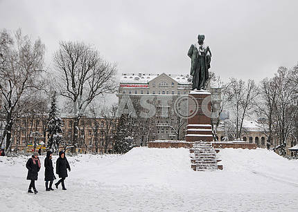 Shevchenko Park in the snow