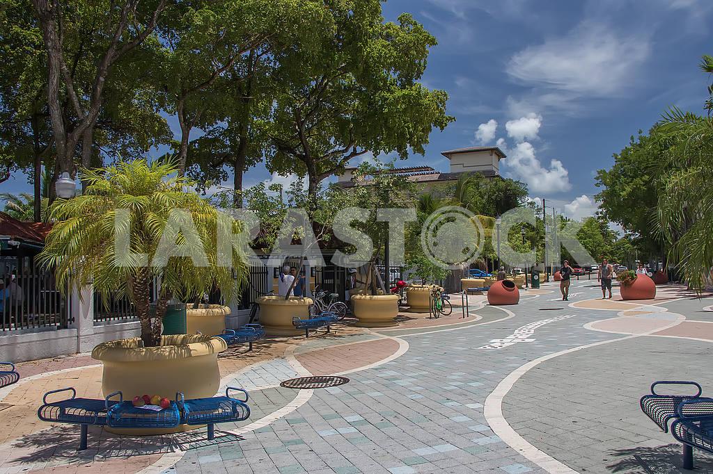 Southwest 15th Avenue. Miami — Image 51351