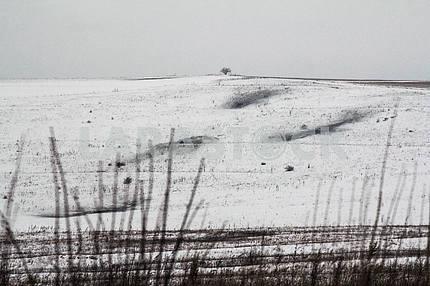 Funnels left by Hrad near the highway Krasnogorovka - Avdeevka.