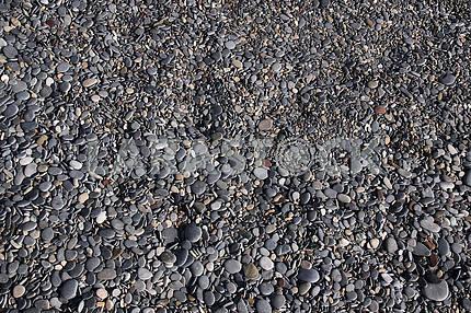 Black pebbles on the beach