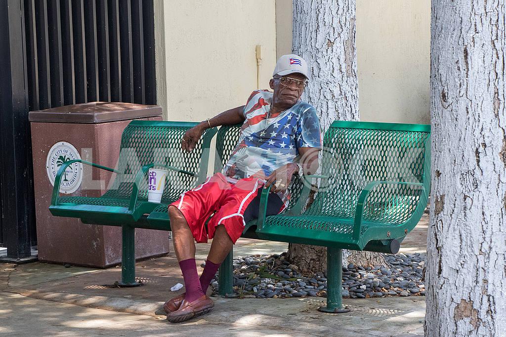 Местный житель. Майами — Изображение 51557
