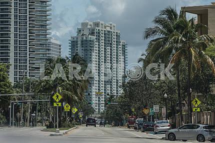 Street Alton Road. Miami