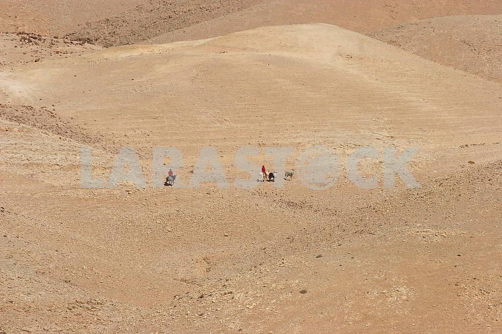 Bedouins in Judea desert — Image 51891