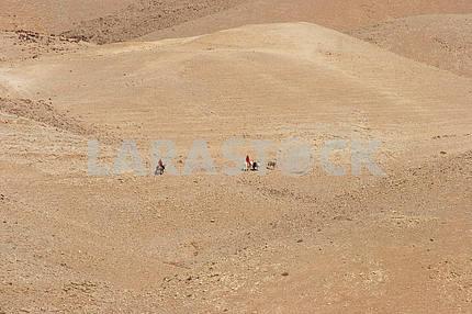 Бедуины в Иудейской пустыне