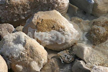 The big crystal of salt of Dead Sea, Israel