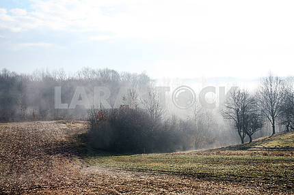 Misty countryside morning in February,9