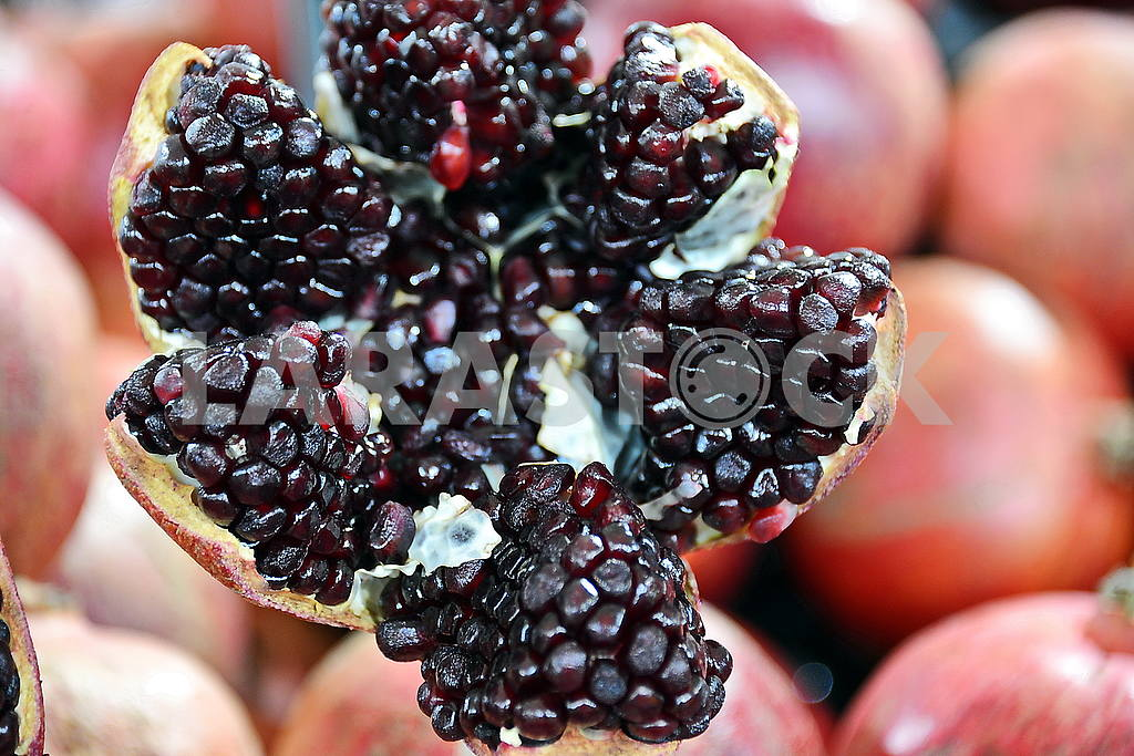 Flower of the pomegranate fruit — Image 52270