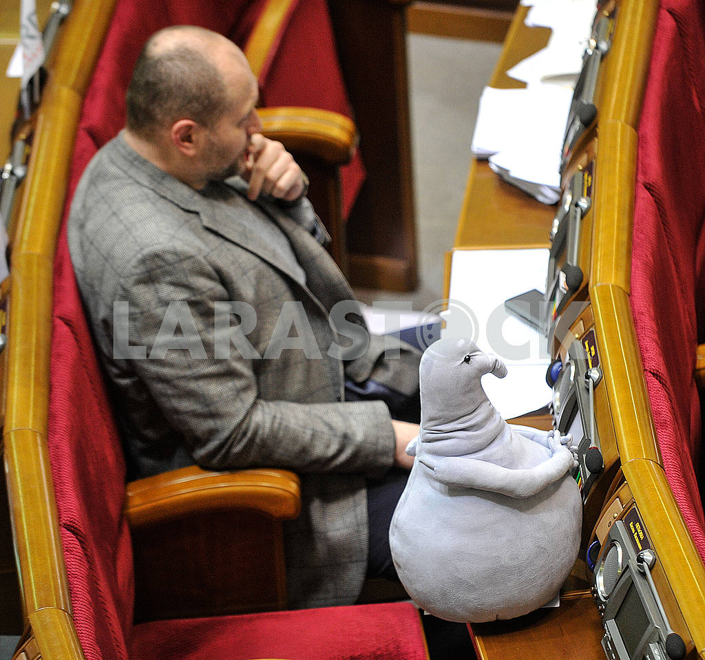 Borislav Bereza and the waiting doll in the Verkhovna Rada — Image 52360