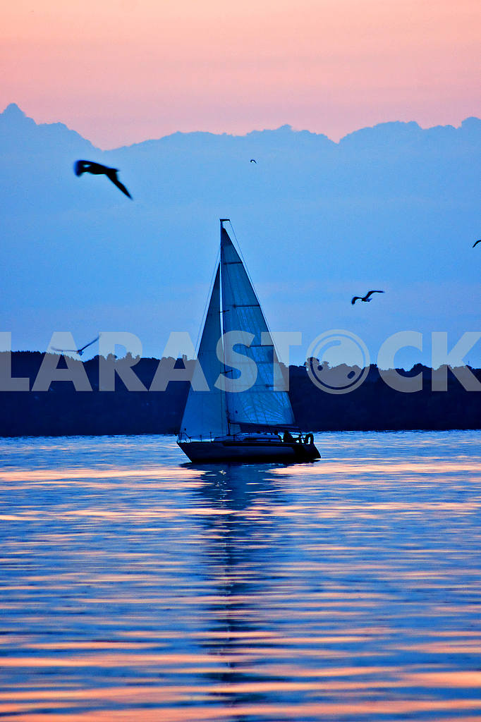 Yacht at sunset, sun sail, sea gulls, sea — Image 52661