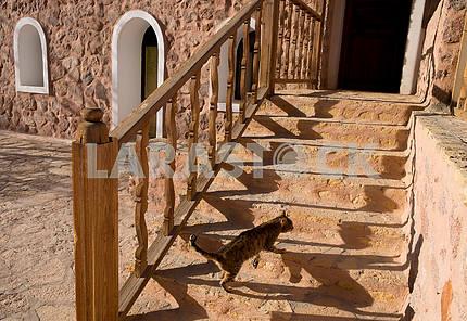 Лестница в монастыре Святой Екатерины