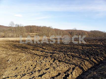Весна наступает, ранние работы, сельская местность, Хорватия, 13