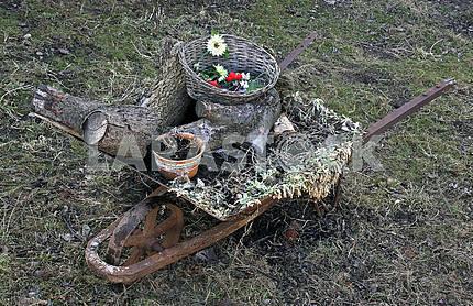 Wheelbarrow with rubbish
