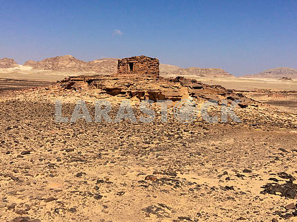 Navamis at Sinai