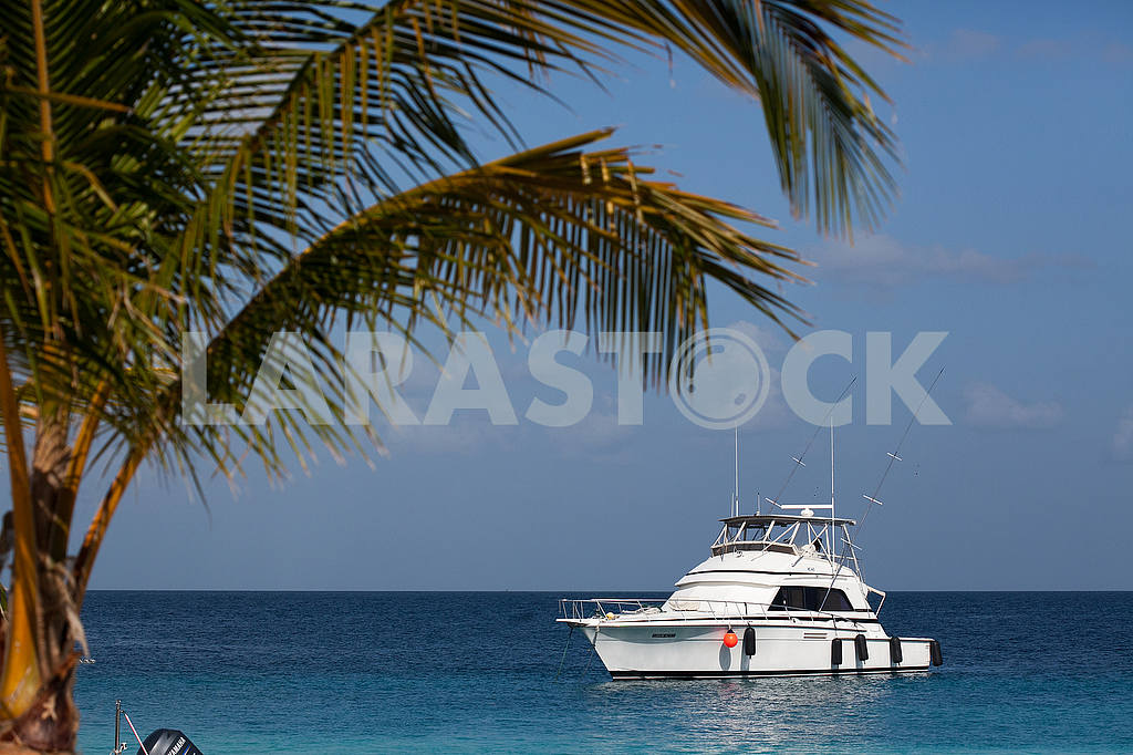 White yacht in the Caribbean Sea — Image 53189