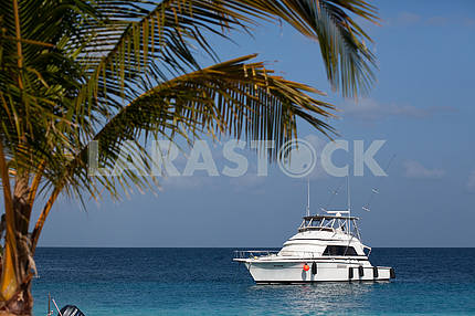 White yacht in the Caribbean Sea
