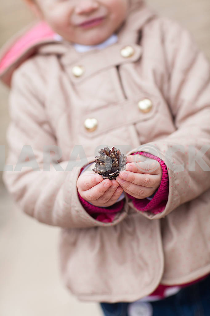 Child's hand and cone — Image 53226
