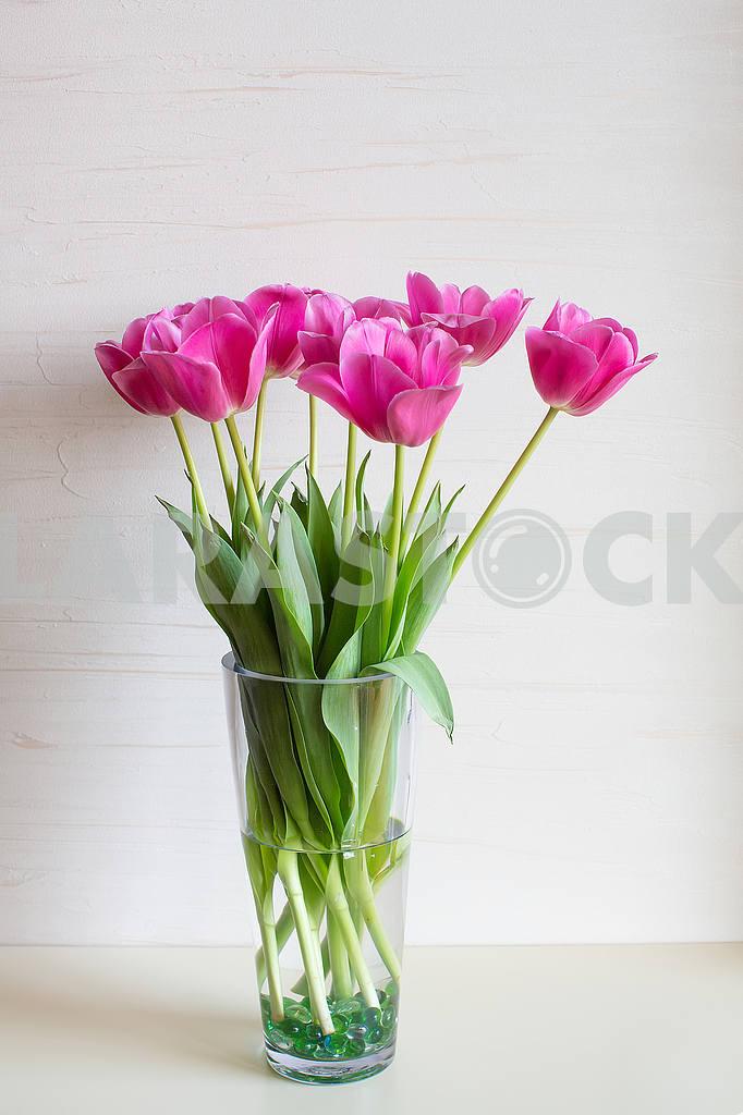 Tulips — Image 53280