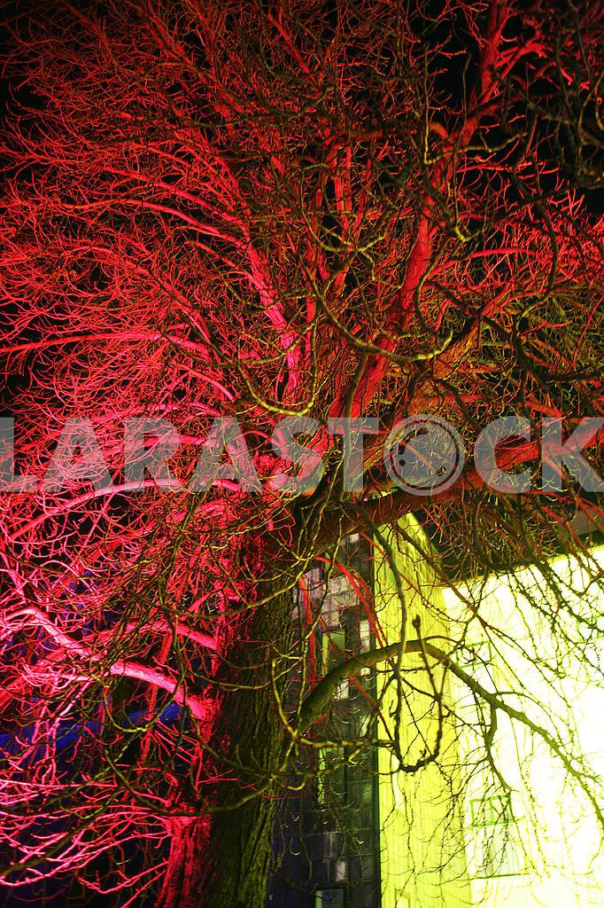 Festival of Lights,Laser Story,Zagreb,2017.,24 — Image 53374
