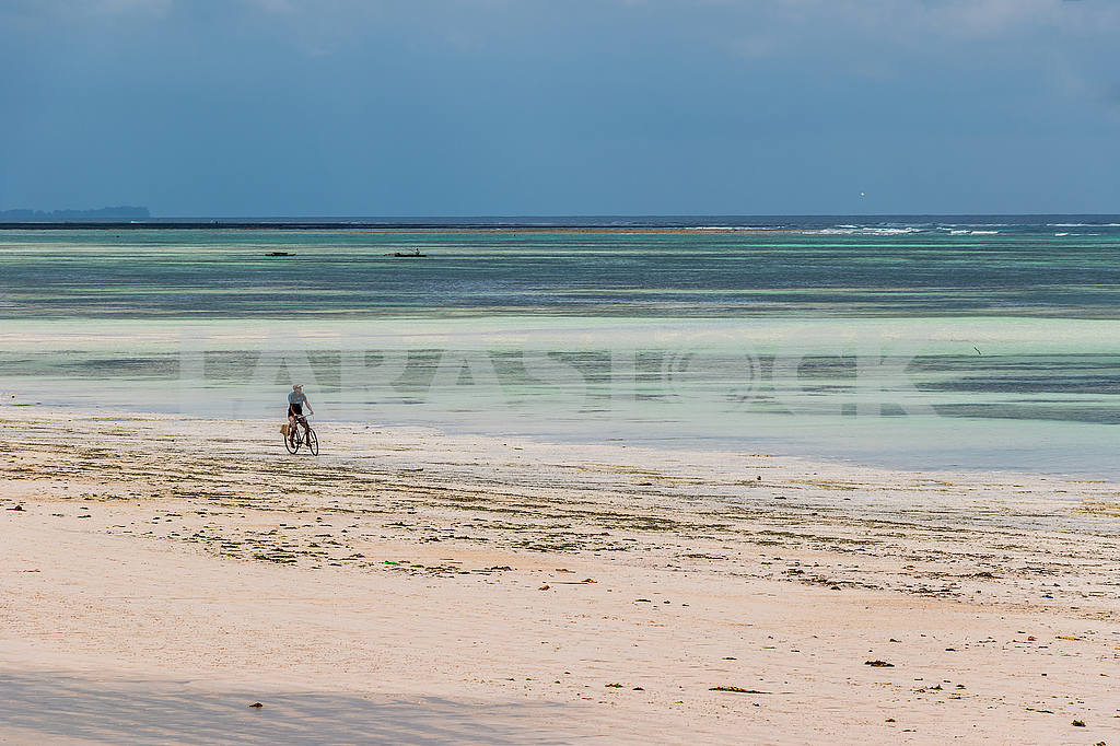 A man is riding a bicycle along the sand — Image 53547