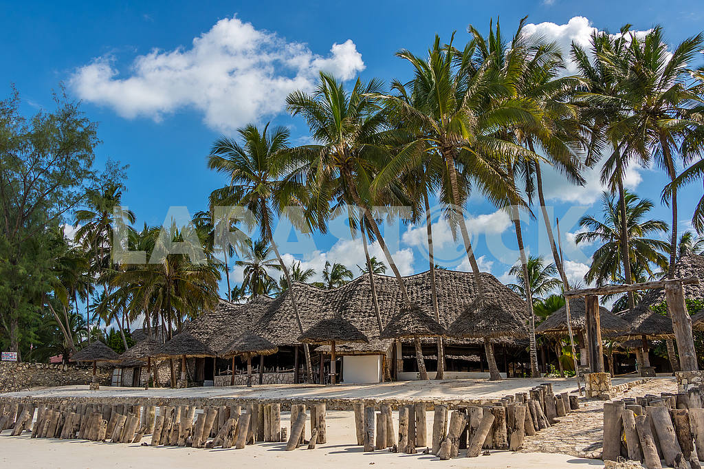 Palms and houses in Zanzibar — Image 53550