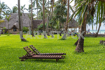 Sun beds and palms in Zanzibar