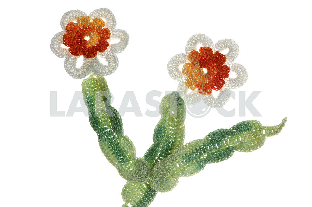 Crocheted applique of flowers — Image 53772