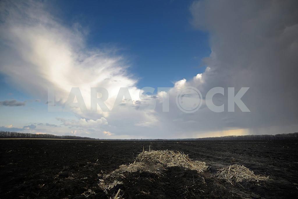 Весенне небо — Изображение 53901