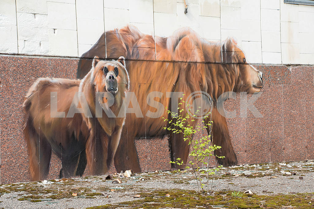 Graffiti on the wall in Pripyat — Image 54529