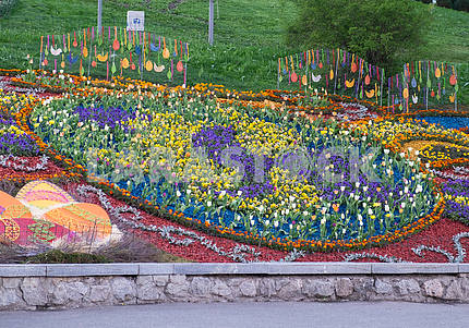 Flower bed at the exhibition of tulips