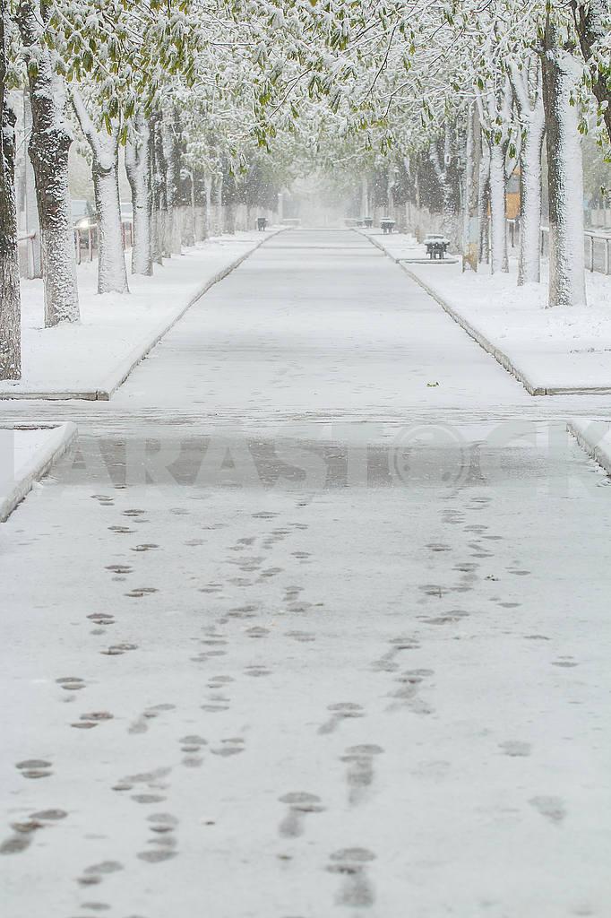 Weather — Image 54781