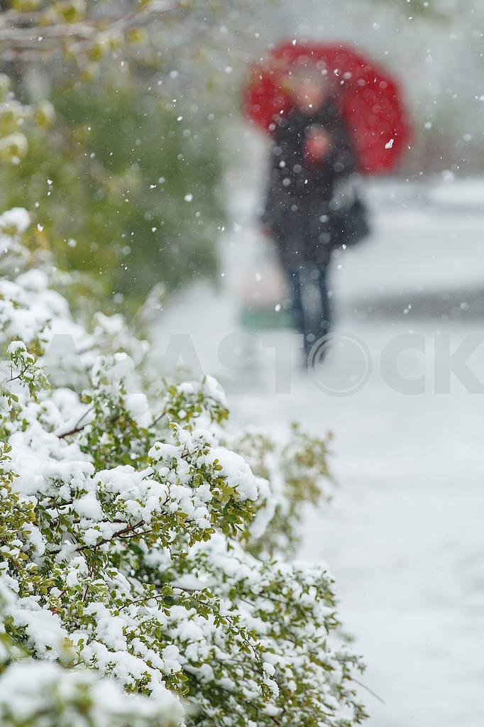 Weather — Image 54793
