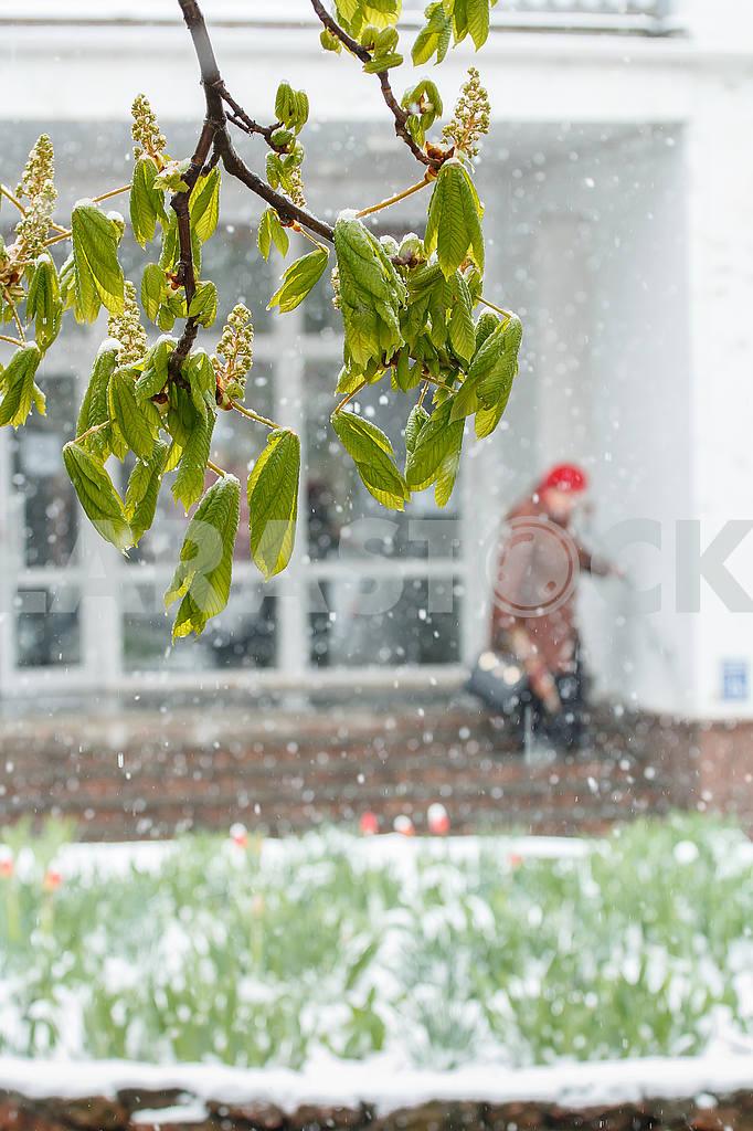 Weather — Image 54796