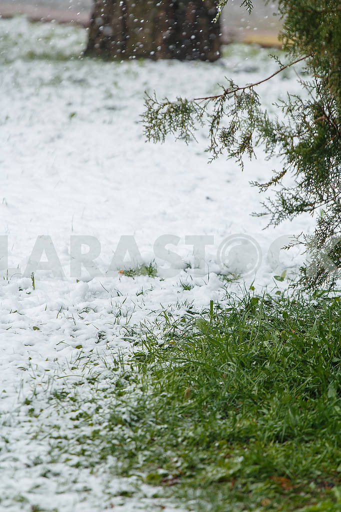 Weather — Image 54801