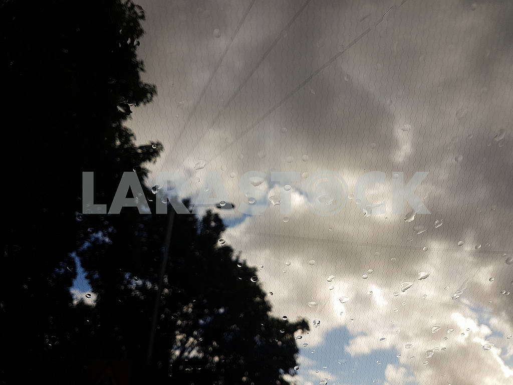 Raindrops on Glass — Image 55156
