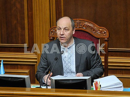 Andrey Parubiy in embroidery