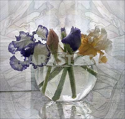 Цветы ирисов в круглой стеклянной прозрачной вазе. Художественная обработка- картина.