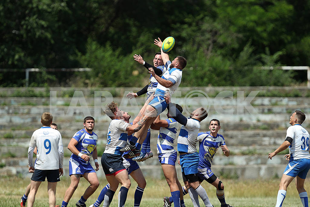 Rugby Wolverine - Polytechnic — Image 56900