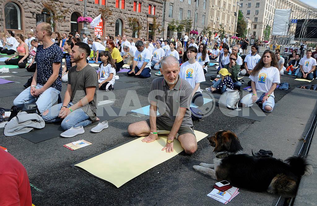 "Yoga session ""Marathon without fuss"" in Kiev — Image 56948"