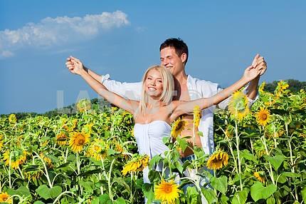 Любящей пары в поле подсолнухов
