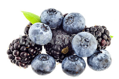 Blueberries and mulberries