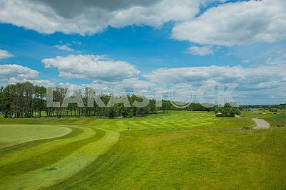 Background with free text space  field with the forrest and blue sky and white clouds  Clipped lawn in a sunny day , a place where to rest