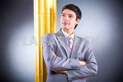 Portrait of the businessman in grey suit