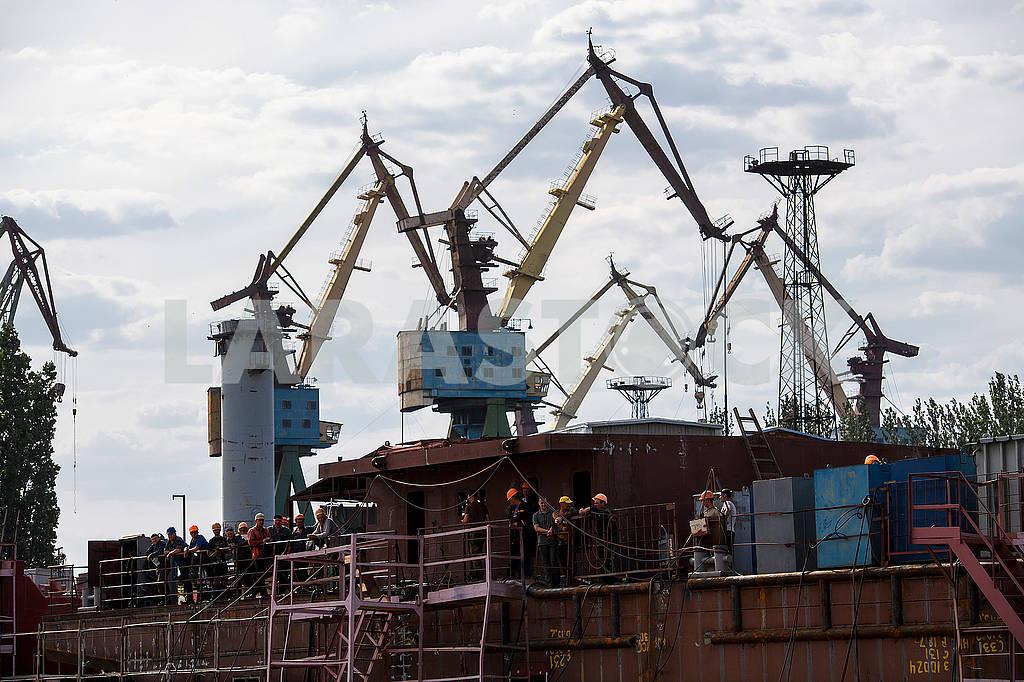 Port cranes — Image 61264