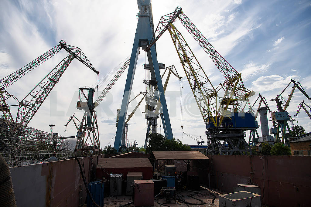 Port cranes — Image 61268
